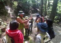 【参加者募集】自然を楽しもう!春日山自然学校プロジェクト2021