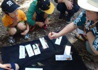 【参加者募集】4/20 春日山自然学校プロジェクト2019