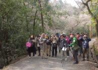 第27回世界遺産春日山原始林観察会 野鳥から見る春日山