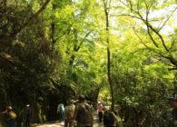 4/25 アースデイ奈良 春日山自然学校プロジェクト 募集開始!